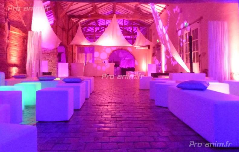 mariage au château de luponnas avec pro-anim